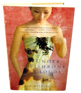 Under Fishbone Clouds - Bday Novel